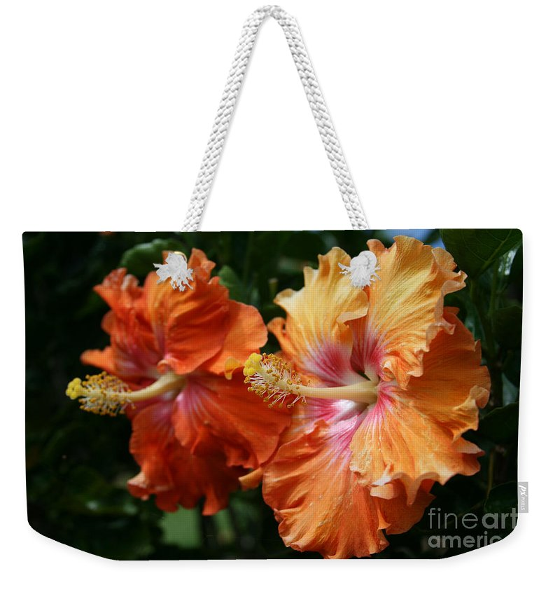 Aloha Weekender Tote Bag featuring the photograph Aloha Keanae Tropical Hibiscus by Sharon Mau