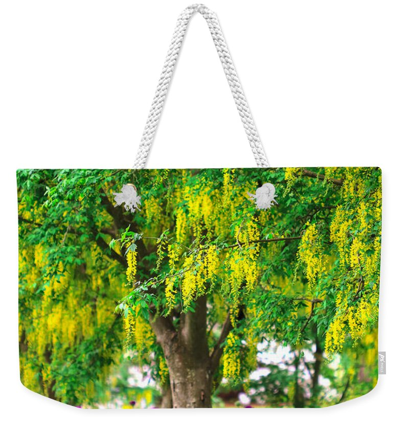 Colorful Weekender Tote Bag featuring the photograph Alone by Eti Reid