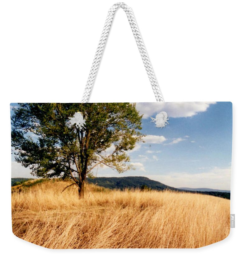 Tree Weekender Tote Bag featuring the photograph Alone On A Hill by Laura Corebello