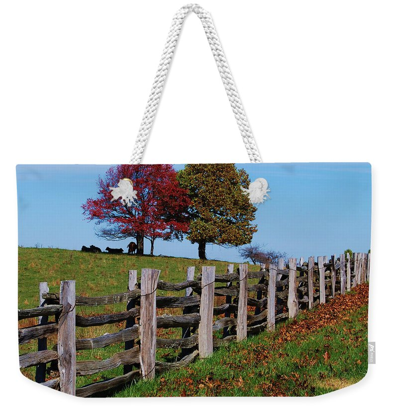 Trees Weekender Tote Bag featuring the photograph Along The Fence by Eric Liller