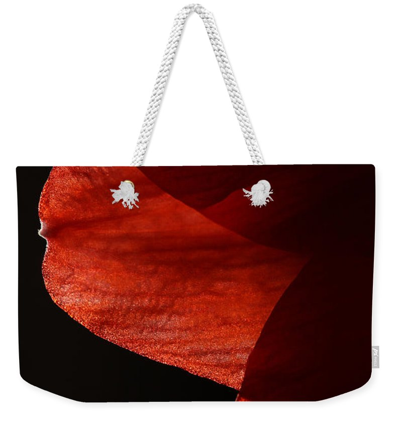 Amaryllis Weekender Tote Bag featuring the photograph Amaryllis Abstract by Karol Livote