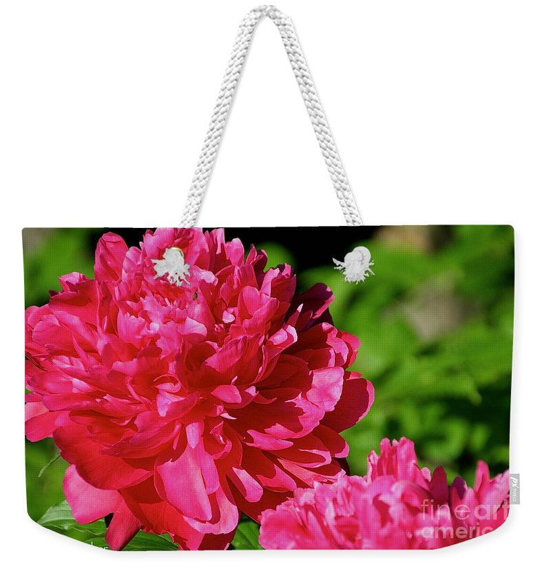 Flower Weekender Tote Bag featuring the photograph Amazingly by Susan Herber