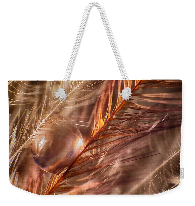 Macro Weekender Tote Bag featuring the photograph Amber by Lauri Novak
