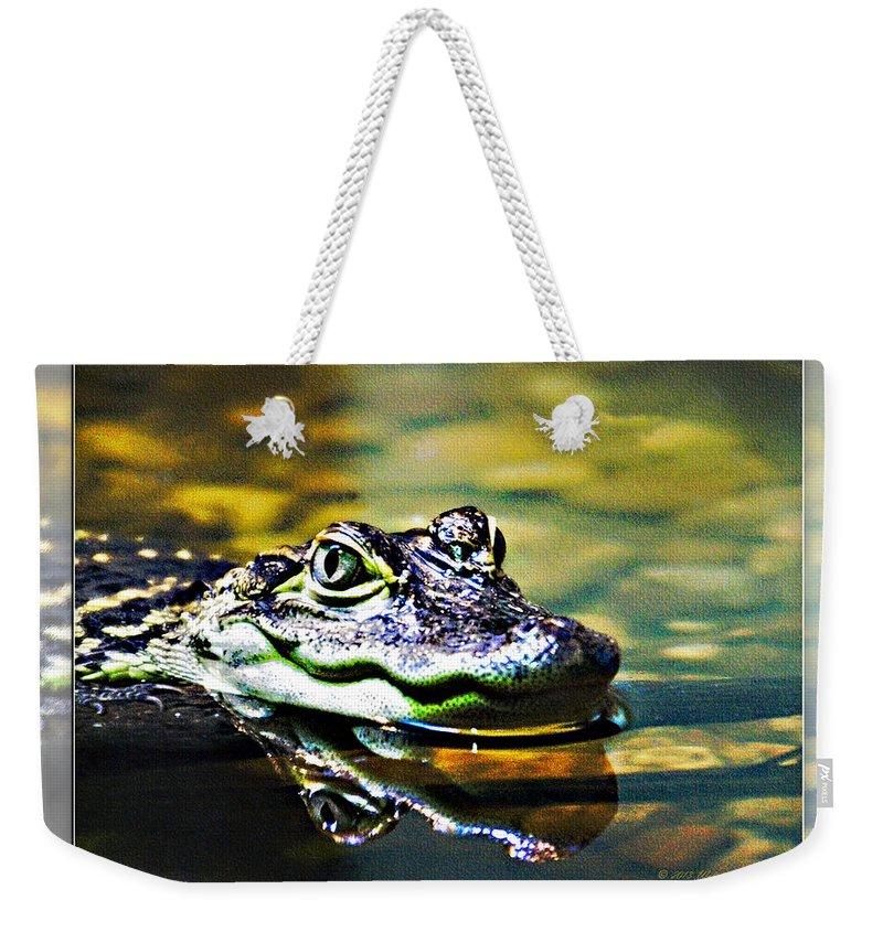 Rolling Hills Wildlife Adventure  Weekender Tote Bag featuring the photograph American Alligator 2 by Walter Herrit