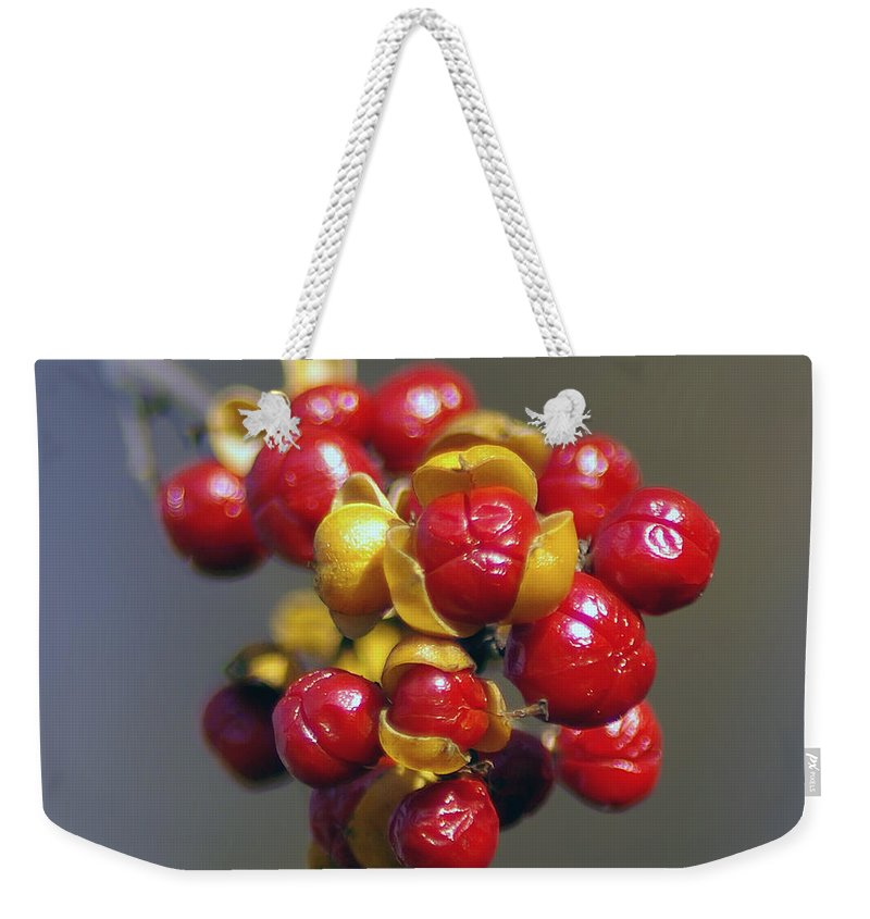 2d Weekender Tote Bag featuring the photograph American Winterberry by Brian Wallace