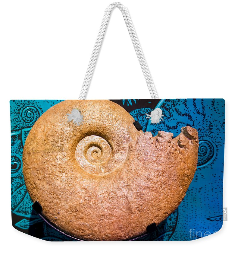Nature Weekender Tote Bag featuring the photograph Ammonite Fossil by Millard H. Sharp