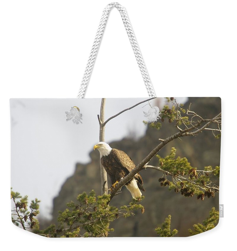 Eagle Weekender Tote Bag featuring the photograph An Eagle In The Spring by Jeff Swan