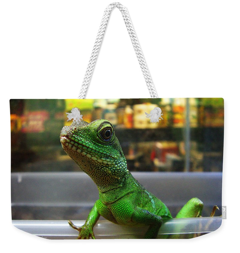 Gecko Weekender Tote Bag featuring the photograph An Escape Artist by Xueling Zou