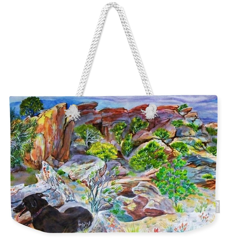 Desert Colors Brightly Enhanced From Original Weekender Tote Bag featuring the painting Ancient Camp Ground and Labrador by Annie Gibbons