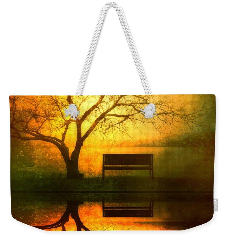 Reflection Weekender Tote Bags