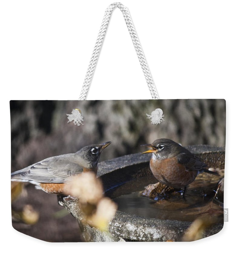 Robin Weekender Tote Bag featuring the photograph And So She Says by Teresa Mucha
