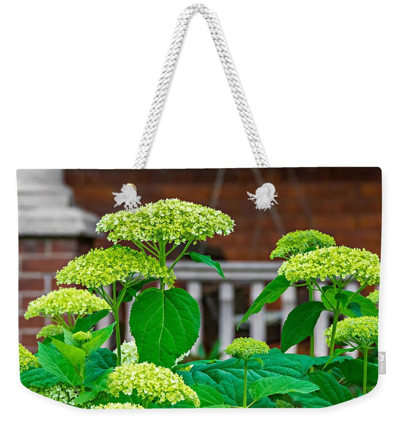 Bolton Weekender Tote Bag featuring the photograph And The Livin' Is Easy by Steve Harrington