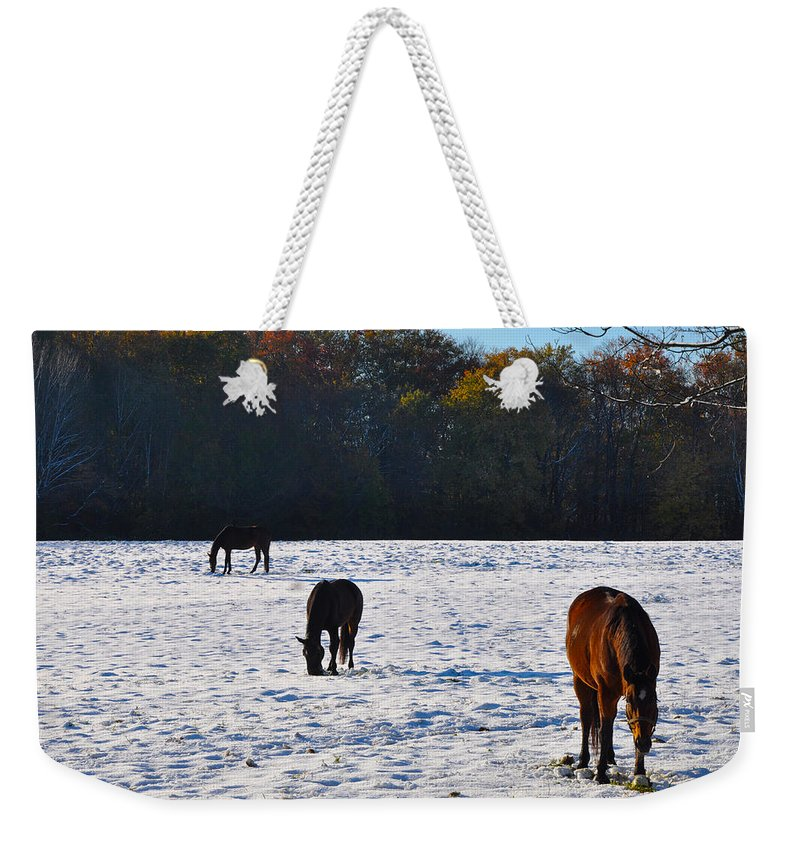 And Weekender Tote Bag featuring the photograph And Then There Were Three by Bill Cannon