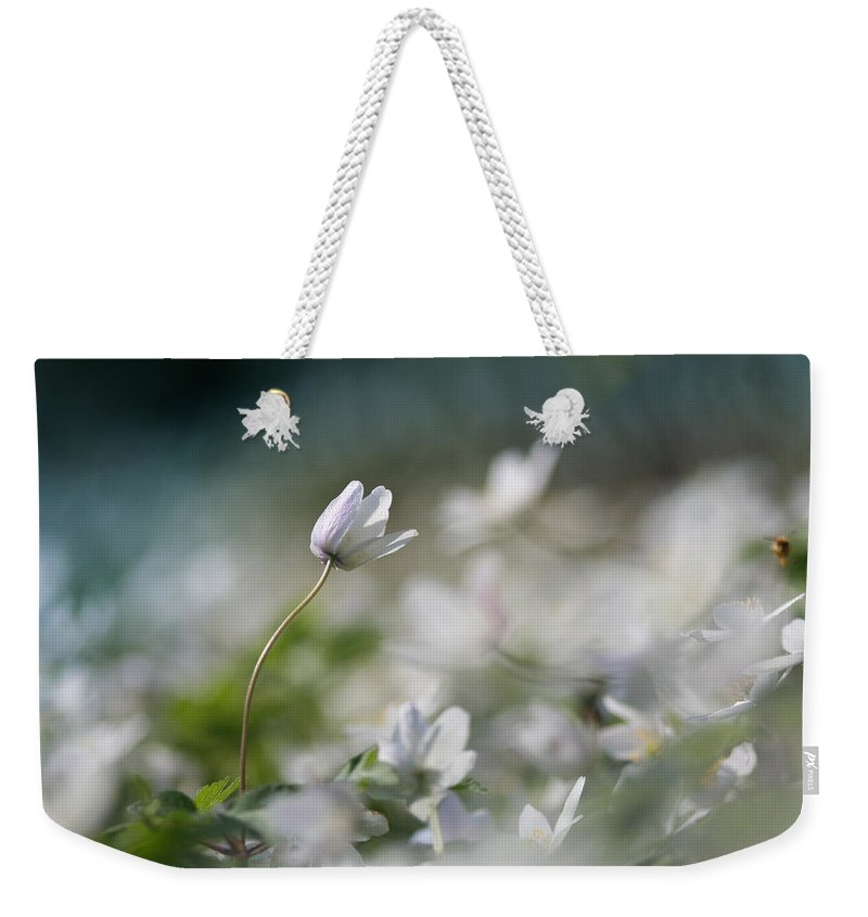 Photo Weekender Tote Bag featuring the photograph Anemone Flower by Dreamland Media