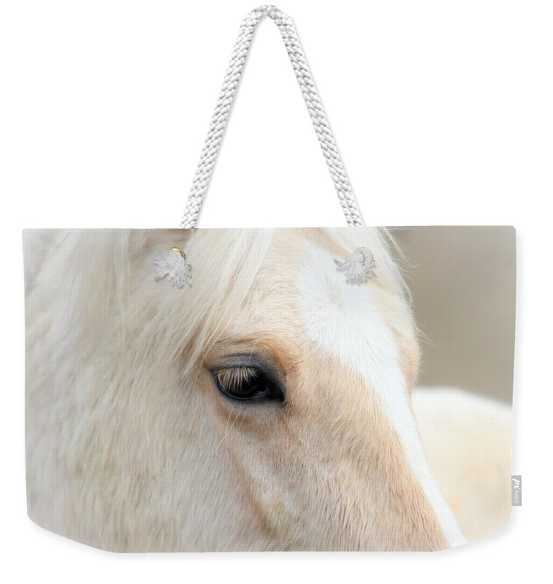Horses Weekender Tote Bag featuring the photograph Angel Eyes by Athena Mckinzie
