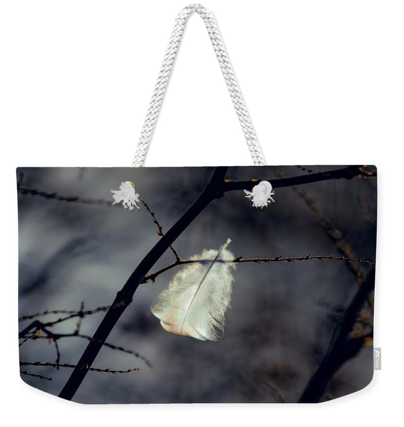 Feather Weekender Tote Bag featuring the photograph Angel Feather by Bob Orsillo