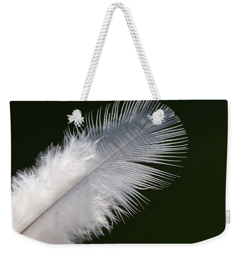 Angel Weekender Tote Bag featuring the photograph Angel Feather by Carol Lynch