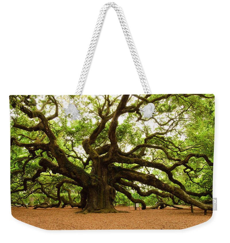 Tree Weekender Tote Bag featuring the photograph Angel Oak Tree 2009 by Louis Dallara