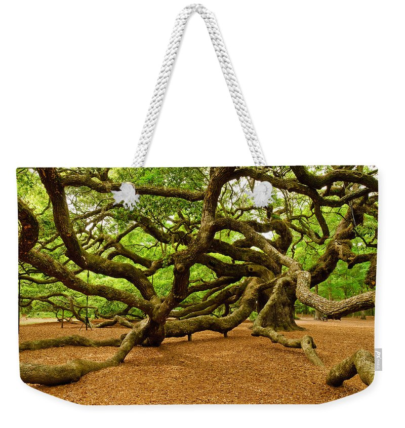 Nature Weekender Tote Bag featuring the photograph Angel Oak Tree Branches by Louis Dallara