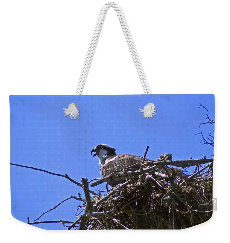 Bird Weekender Tote Bag featuring the photograph Angry Bird by Joe Geraci