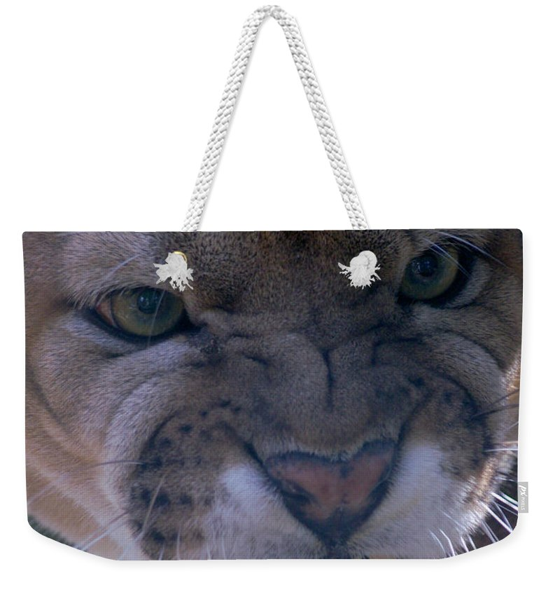 Panther Weekender Tote Bag featuring the photograph Angry Florida Panther by Larry Allan