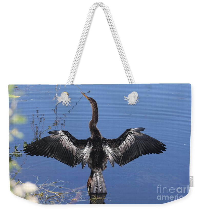 Anhinga Weekender Tote Bag featuring the photograph Anhinga Sunbathing by Christiane Schulze Art And Photography