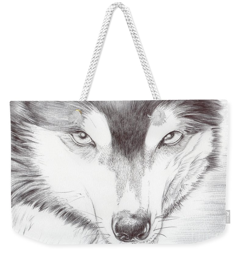 Animal Weekender Tote Bag featuring the drawing Animal Kingdom Series - Wild Friend by Bobbie S Richardson