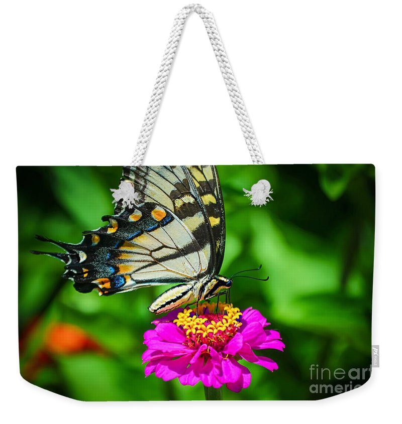 Anise Butterfly Weekender Tote Bag featuring the photograph Anise Swallowtail Butterfly by Peggy Franz