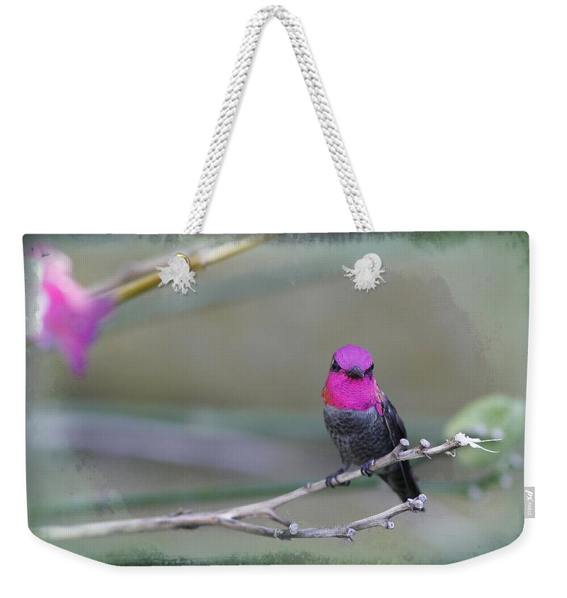 Hummingbird Weekender Tote Bag featuring the photograph Anna's Hummingbird - Male by Angela Stanton