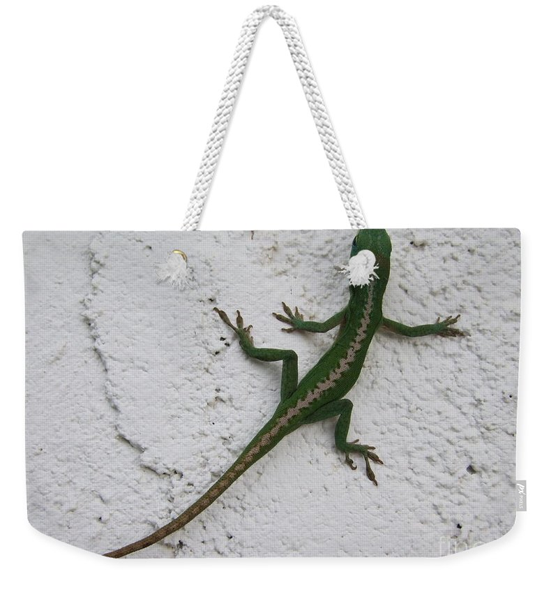 Lizard Weekender Tote Bag featuring the photograph Anole On Stucco by Mary Deal