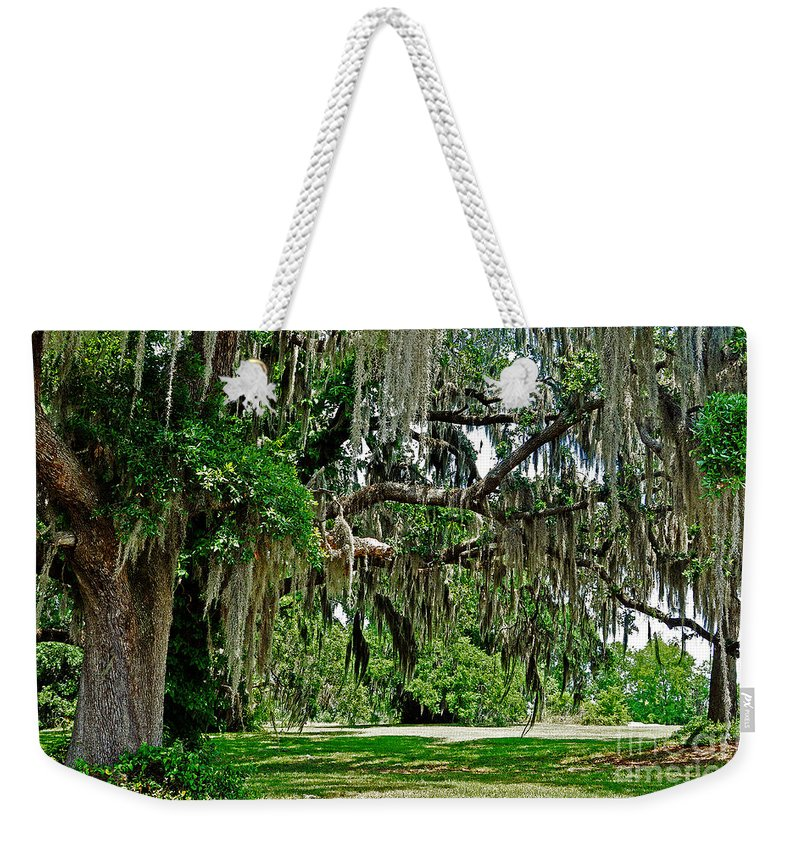 Live Oak Weekender Tote Bag featuring the photograph Savannah National Wildlife Refuge by Lydia Holly