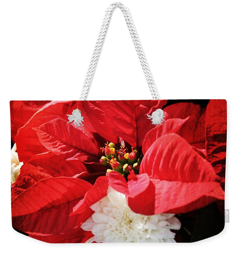 Christmas Weekender Tote Bag featuring the photograph Antiqued Poinsettia by Robin Lewis