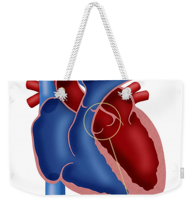 Illustration Weekender Tote Bag featuring the photograph Aortic Valve by Monica Schroeder