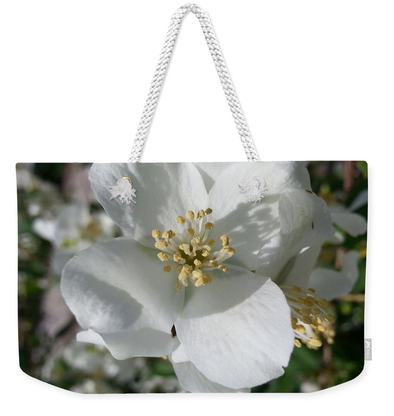 Apple Blossom Weekender Tote Bag featuring the photograph Apple Blossom Time by Caryl J Bohn