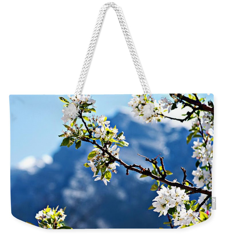 Apple Weekender Tote Bag featuring the photograph Apple Blossoms Frame The Rockies by Lisa Knechtel