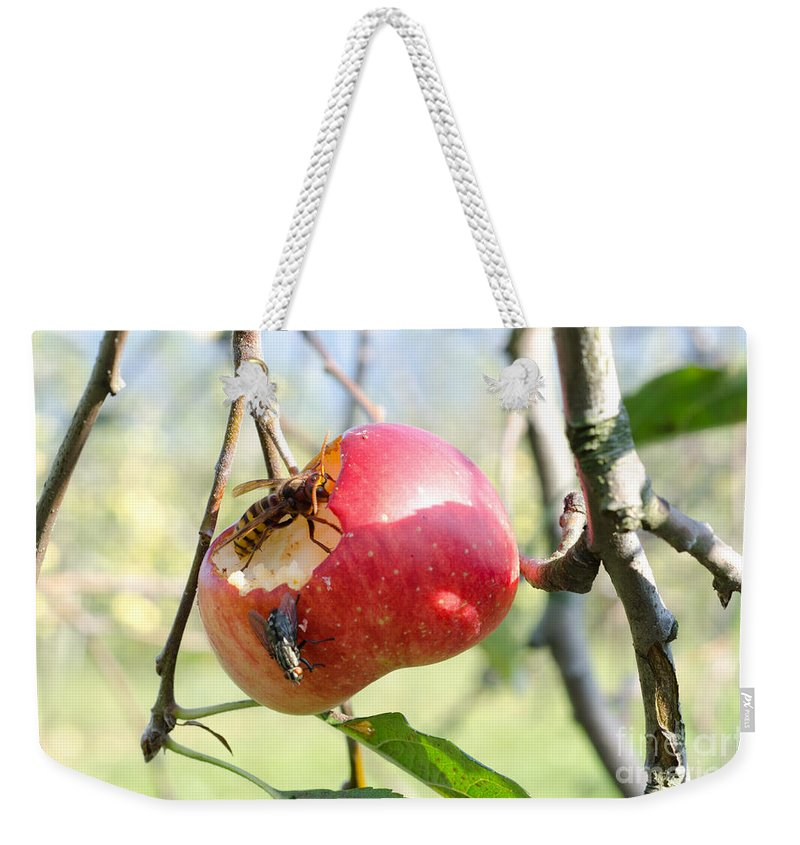 Apple Weekender Tote Bag featuring the photograph Apple by Mats Silvan