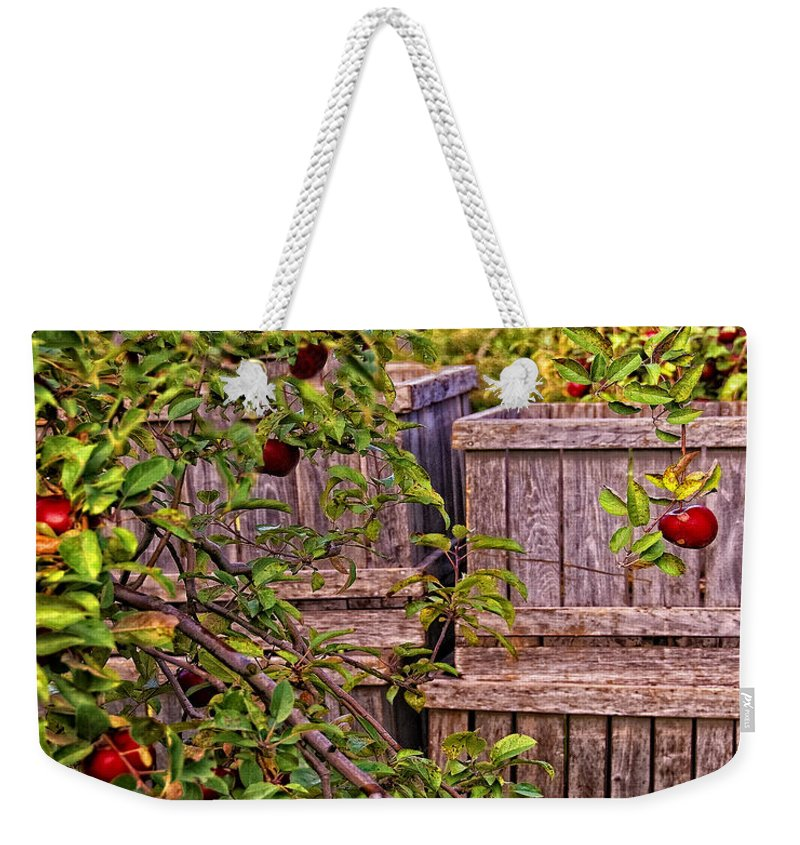 Apples Weekender Tote Bag featuring the photograph Apple Orchard Harvest by Timothy Flanigan and Debbie Flanigan Nature Exposure