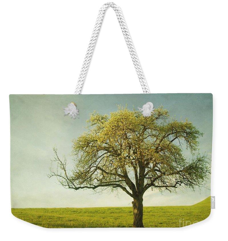 Appletree Weekender Tote Bag featuring the photograph Appletree by Priska Wettstein