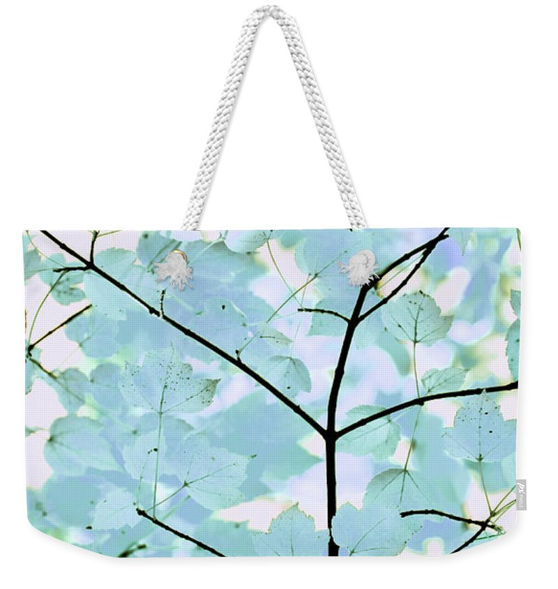 Leaf Weekender Tote Bag featuring the photograph Aqua Blues Greens Leaves Melody by Jennie Marie Schell