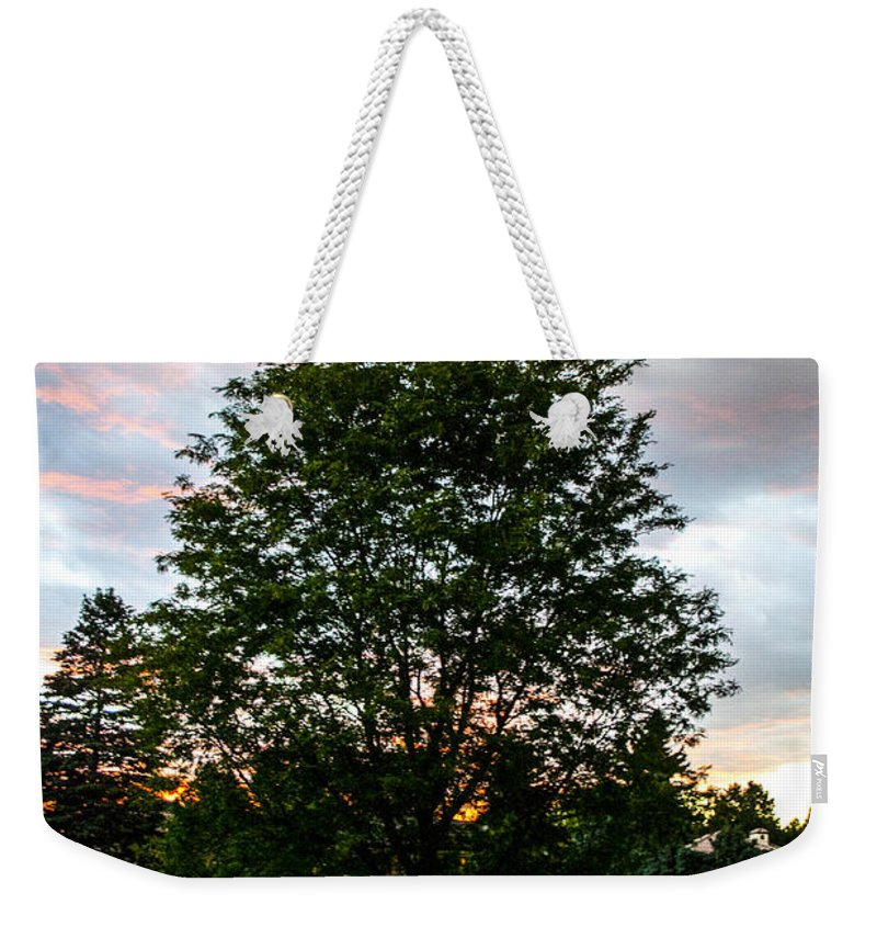 Outdoors Weekender Tote Bag featuring the photograph Arbor by Angus Hooper Iii