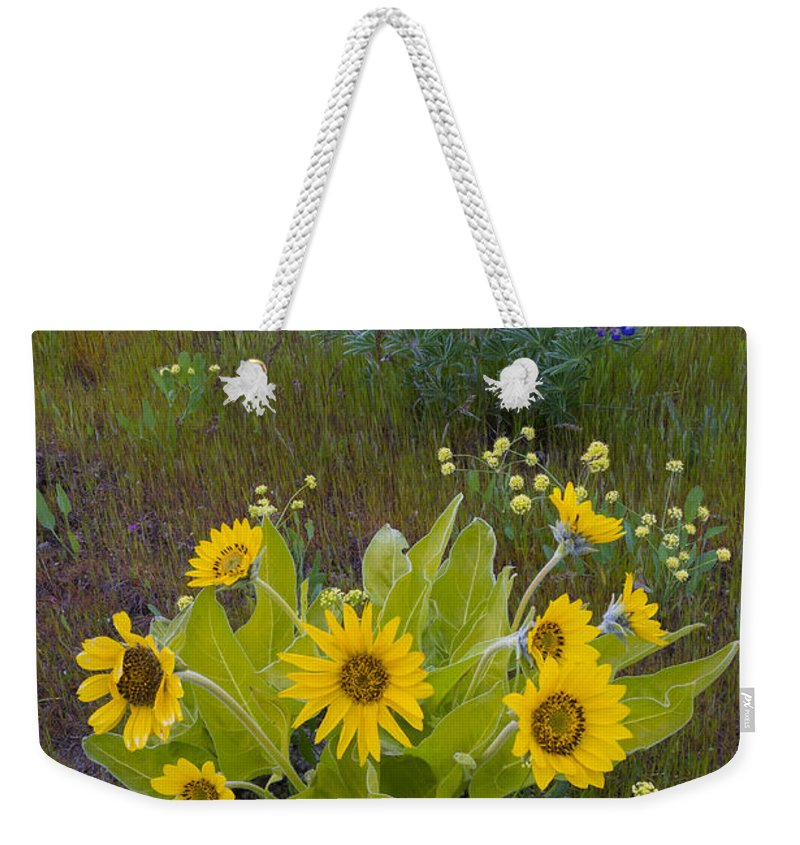 Nature Weekender Tote Bag featuring the photograph Arrowleaf Balsamroot And Lupine by John Shaw