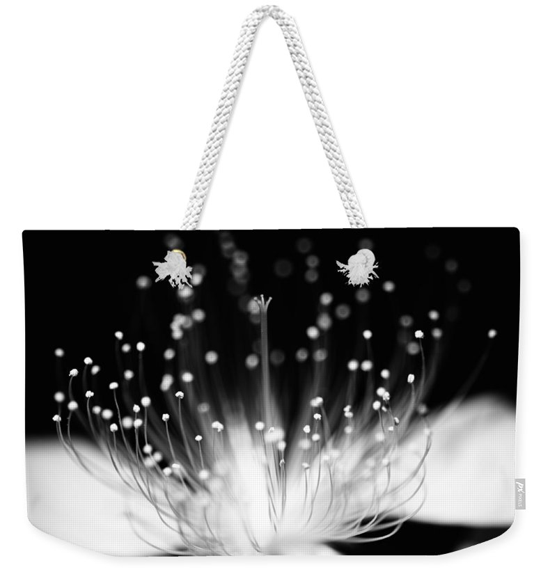 Black Background Weekender Tote Bag featuring the photograph As Flame by Char