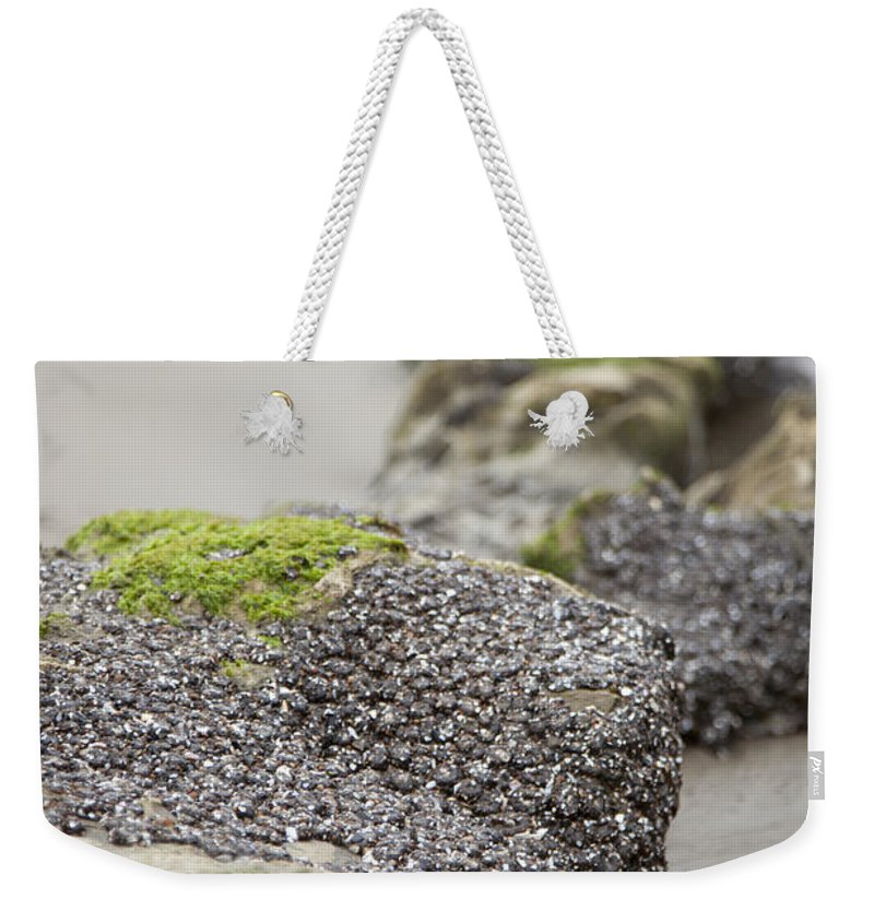 Rocks Weekender Tote Bag featuring the photograph As You Leave by Amanda Barcon
