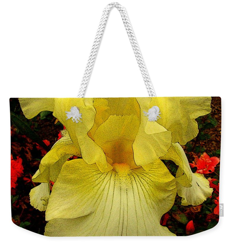 Fine Art Weekender Tote Bag featuring the photograph Ascension by Rodney Lee Williams