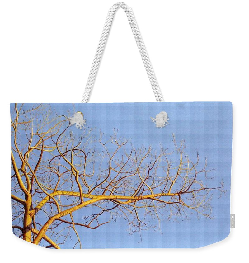 Aspen Painting Weekender Tote Bag featuring the painting Aspen In The Autumn Sun by Elaine Booth-Kallweit
