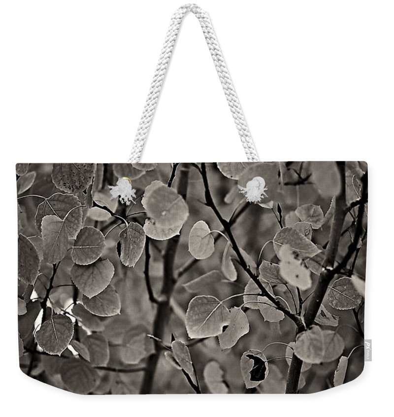 Aspen Weekender Tote Bag featuring the photograph Aspen Leaves by Charles Muhle