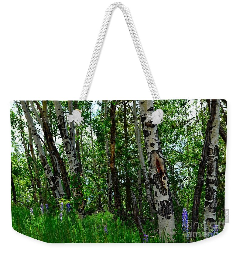 Trees Weekender Tote Bag featuring the photograph Aspen Trees by Crystal Miller