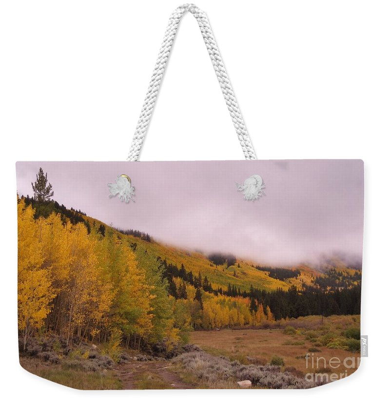 Aspens Weekender Tote Bag featuring the photograph Aspens In The Mist by Tonya Hance