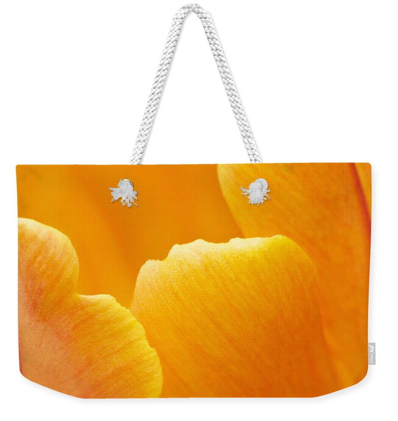 Floral Weekender Tote Bag featuring the photograph Aspiration by Linda Cooke