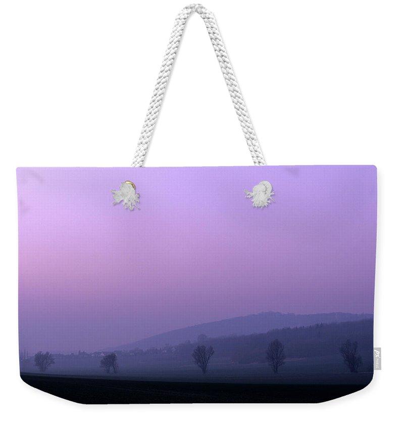 Asse Weekender Tote Bags